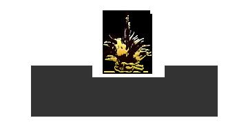 logo-LAM